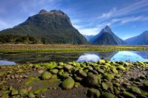 Explore Fiordland National Park (Milford Sound), New Zealand (UNESCO site)