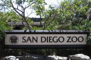 Visit San Diego Zoo, California