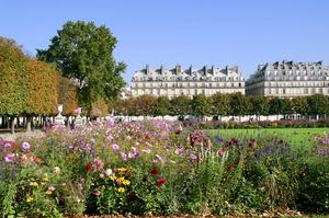 Visit Tuileries Garden, Paris, France