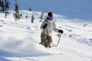 Ski or Snowboard Whistler Blackcomb, Canada
