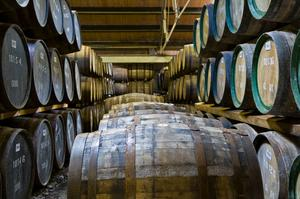 Drink Whisky along Scotland's Malt Whisky Trail