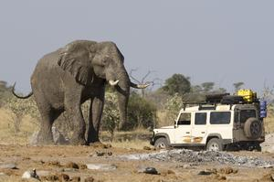 Top 10 African Safari Parks