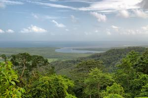 Explore Daintree Rainforest & Cape Tribulation, Australia (UNESCO site)