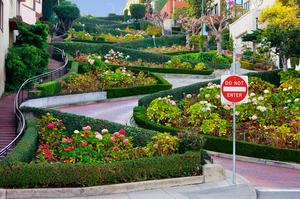 Drive down Lombard Street, San Francisco, California