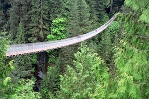Walk across Capilano Suspension Bridge, BC, Canada