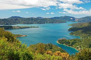 Trek or Mountain Bike the Queen Charlotte Track, Marlborough Sounds, New Zealand