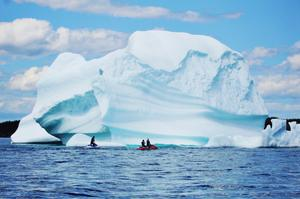 "See icebergs in ""Iceberg Alley,"" St. Anthony, Newfoundland, Canada"