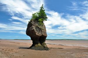 Explore Fundy National Park, New Brunswick, Canada