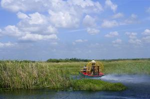 Explore Big Cypress National Preserve, Florida
