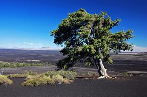 Explore Craters of the Moon National Monument, Idaho