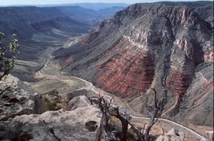 Explore Grand Canyon-Parashant National Monument, Arizona