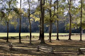 Hike Natchez Trace Trail, Tennessee, Alabama & Mississippi