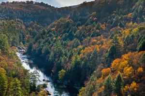 Explore Obed Wild and Scenic River, Tennessee
