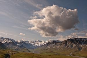Explore Denali National Preserve, Alaska