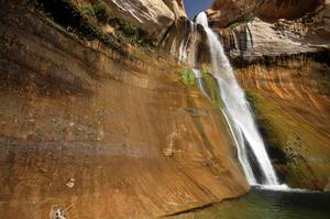 See Calf Creek Falls, Utah
