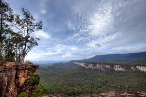 Explore Carnarvon National Park, Queensland, Australia
