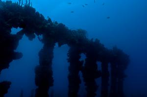 Wreck Dive RMS Rhone, British Virgin Islands
