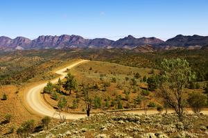 Explore Flinders Ranges National Park, South Australia