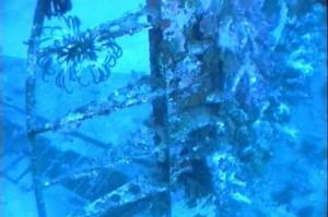 Wreck Dive Blackjack B17, Milne Bay, Papua New Guinea