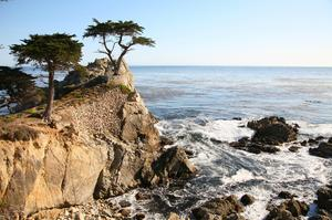 Drive the 17-Mile Drive, Monterey Peninsula, California