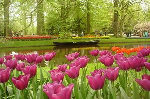 See Garden of Europe (Keukenhof), Lisse, Netherlands
