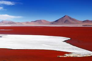 Explore Laguna Colorada (Red Lagoon), Bolivia