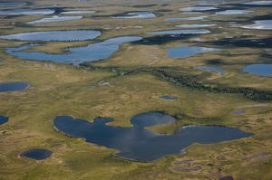 Explore Kobuk Valley National Park, Alaska