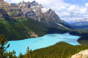 Explore Peyto Lake, Banff National Park, Canada