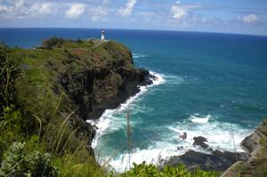 Birding at Kilauea Point National Wildlife Refuge, Hawaii