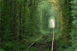 Walk in The Tunnel of Love, Klevan, Ukraine