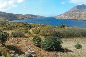 Explore Killary Harbour, Ireland
