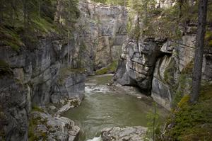 Explore Maligne Canyon, Jasper National Park, Canada