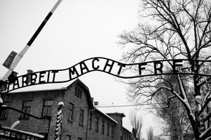 See Auschwitz &amp; Birkenau Concentration Camps, Poland (UNESCO site)