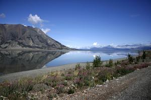 Explore Kluane National Park, Canada (UNESCO site)